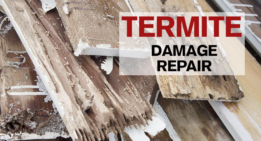 Termite Damage Repair San Diego